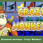Игровой автомат «Crazy Monkey»