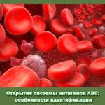 Открытие системы антигенов АВ0: особенности идентификации