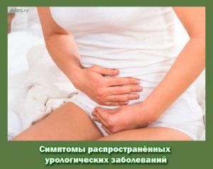 Симптомы распространённых урологических заболеваний